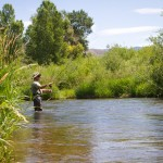 Park City Fly Fishing Weber River