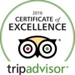 Trip Advisor Circle of Excellence