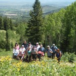 Hiking in the Wasatch Mountains above Park City