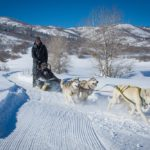 Dog Sledding tours, Park City, Utah