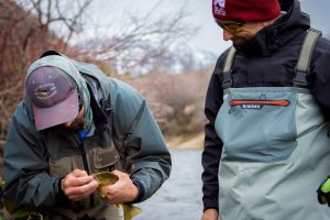 park city guided fly fishing